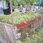 Khasiat Dan Kelebihan Buah Anggur
