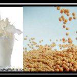 Kelebihan Dan Kebaikan Kacang Soya
