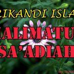 Halimatus Sa'adiah ( Srikandi Islam )
