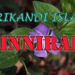 Zinnirah ( Srikandi Islam )