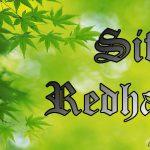 Redha Dengan Ketentuan Ilahi