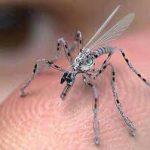 Tentera AS Cipta Serangga Pengintip