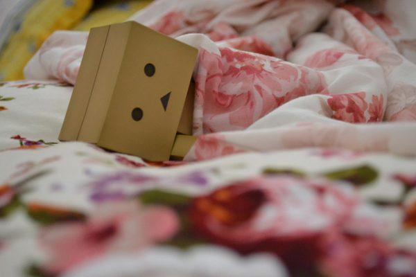 Tidur nabi