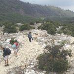 Mengharungi Pendakian Kehidupan