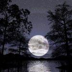 Umpama 1000 Bulan