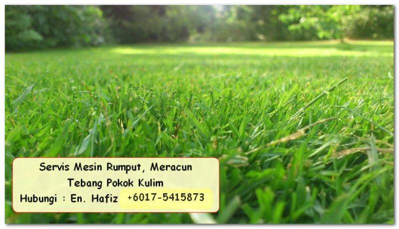 perkhidmatan mesin rumput,  perkhidmatan potong rumput,  perkhidmatan pembersihan dalam rumah,  perkhidmatan kawasan kulim,  servis potong rumput